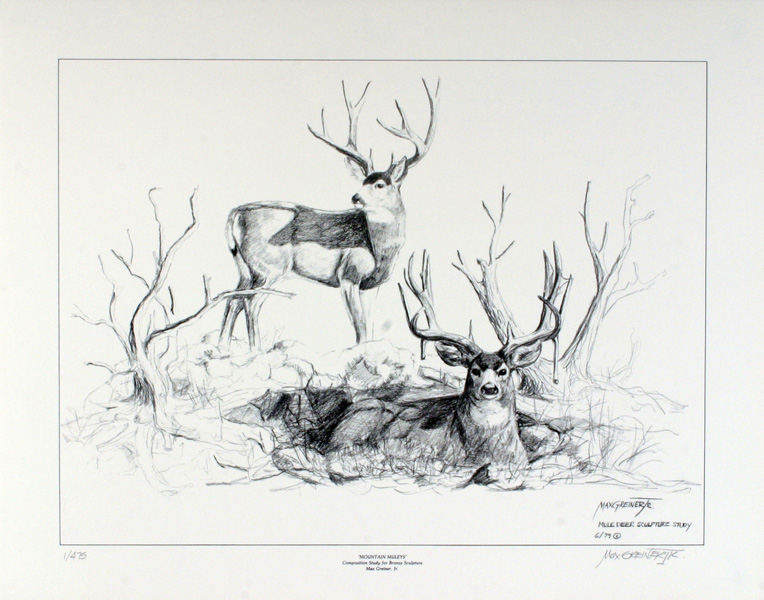Line Drawing Deer : Vector roe deer hand draw portrait isolated on background